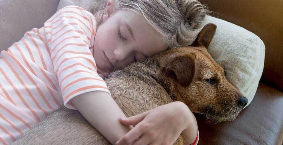 Child and pet cuddling